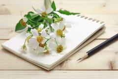 Bloco de notas com a flor do lápis e da grama Fotografia de Stock Royalty Free