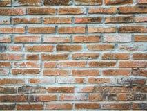 Bloco do tijolo da parede Foto de Stock