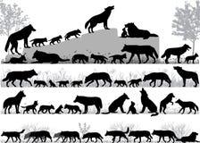 Bloco dos lobos ilustração do vetor