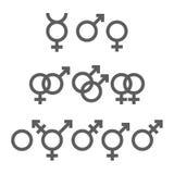 Bloco dos símbolos do gênero ilustração do vetor