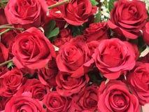 Bloco original vermelho das flores Fotos de Stock