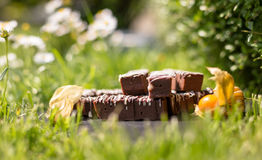 Blocos/barras simples do chocolate Fotos de Stock Royalty Free