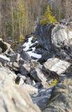 Blocos da mentira de mármore na floresta Imagens de Stock