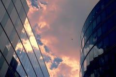 Blocos de escritório Imagem de Stock