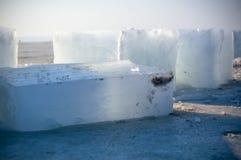 Blocos de gelo Fotos de Stock