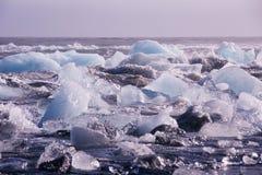 Blocos de gelo em uma praia preta da areia Fotos de Stock