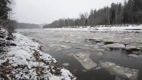 Blocos de gelo que movem-se no rio video estoque