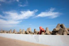 Blocos do quebra-mar de terraplenagem da paredão Imagem de Stock Royalty Free