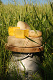 Blocs de fromage sur l'urne de lait Images stock