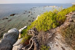 Blocs de marbre en mer sur Aliki, Thassos Photo stock