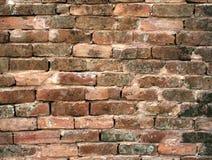 Blocs de mur de briques Photos stock