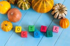 Blocs en bois d'octobre avec les potirons de couleur beaucoup Photos stock