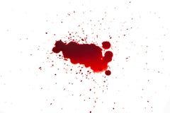Blod Royaltyfri Fotografi