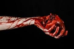 Blod- och allhelgonaaftontema: sönderriven blödande mänsklig hjärta för ruskig blodig handhåll som isoleras på svart bakgrund i s Arkivbild
