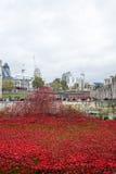 Blod sopade länder och hav av rött Arkivbilder