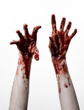 Bloda ner händer på en vit bakgrund, levande döden, demonen, galningen som isoleras Arkivbilder