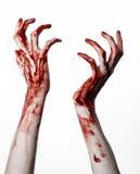 Bloda ner händer på en vit bakgrund, levande döden, demonen, galningen som isoleras Royaltyfria Bilder