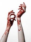 Bloda ner händer på en vit bakgrund, levande döden, demonen, galningen som isoleras Arkivbild