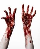 Bloda ner händer på en vit bakgrund, levande döden, demonen, galningen som isoleras Arkivfoto