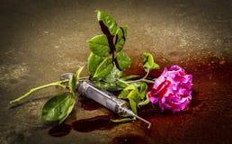 Bloda ner rosa Royaltyfria Bilder
