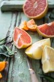 Blodapelsiner och Madarins royaltyfria foton