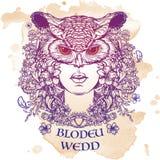 Blodeuwedd sketch  on a grunge background Stock Images