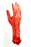 blodig hand Royaltyfri Fotografi