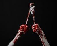 Blodig hand som rymmer en justerbar skiftnyckel, blodig tangent, galen rörmokare, blodigt tema, halloween tema, svart bakgrund so Arkivfoto