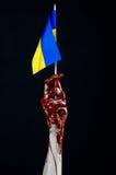 Blodiga händer, flaggan av Ukraina i blodet, revolution i Ukraina, svart bakgrund Arkivfoto