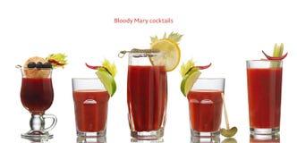 Blodiga Mary coctailar Arkivfoto