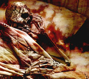 blodigt skelett Royaltyfria Bilder