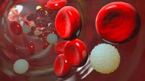 Blodkärl med bloodcells som igenom flödar fotografering för bildbyråer