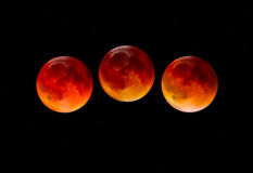 Blodmåne Arkivbilder
