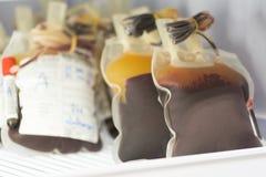 Blodpåse i kylskåp på blodbanken Royaltyfri Fotografi