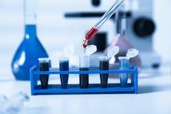 Blodprövkopior för forskning i microtubes arkivfoton