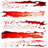 blodtörstig arkivbilder