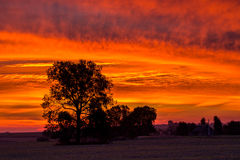 Blody-Sonnenaufgang Stockfotografie