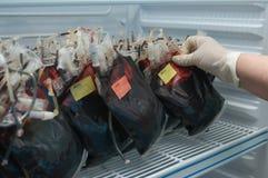 Bloed in pakketten Royalty-vrije Stock Foto