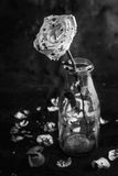 Bloedig nam in fles op zwarte achtergrond toe Stock Afbeelding