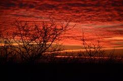 Bloedige zonsondergang Stock Foto's