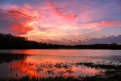Bloedige zonsondergang na de lenteonweer Royalty-vrije Stock Fotografie