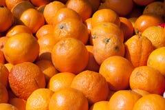Bloedsinaasappelen op markttribune als achtergrond Stock Fotografie