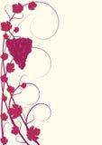 Bloei patroon rode wijnstokken met druiven Royalty-vrije Stock Foto