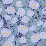 Bloeiend Bloemenpatroon in het vele soort bloemen Bosgeep Royalty-vrije Stock Fotografie