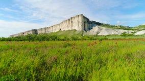 Bloeiend gebied van papaver op achtergrond van witte klippen schot Hoogste mening van mooi groen gebied met papaverbloemen bij stock video