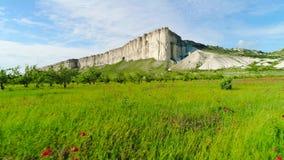 Bloeiend gebied van papaver op achtergrond van witte klippen schot Hoogste mening van mooi groen gebied met papaverbloemen bij stock footage