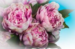 Bloeiend pioenboeket met roze bloemen stock foto