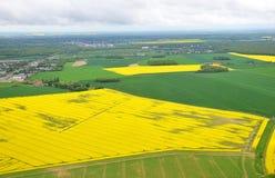 Bloeiend raapzaadgebied in Frankrijk stock foto