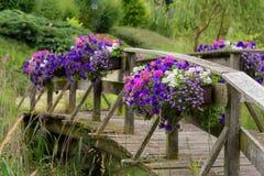 Bloeiende bloemen op een houten brug in een park, aardachtergrond stock foto's