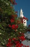 Bloeiende boom en Griekse kerk Royalty-vrije Stock Afbeelding